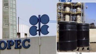 Photo of أوبك+ تبحث تمديد خفض النفط لشهر أو شهرين