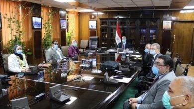 "Photo of مصر تربط ""مرسى علم"" بالشبكة الكهربائية الموحّدة لأوّل مرّة"
