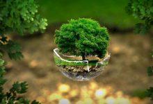Photo of صندوق استثمار يدفع تعويضات عن تلويثه للبيئة
