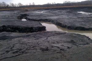 رماد الفحم بالهند يصيب الأخضر واليابس