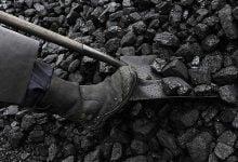 Photo of نشطاء يقتحمون محطّتين لتوليد الطاقة من الفحم في ألمانيا