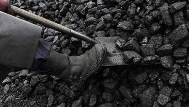 Photo of 95% تراجعًا بأرباح أكبر منتج للفحم في أستراليا