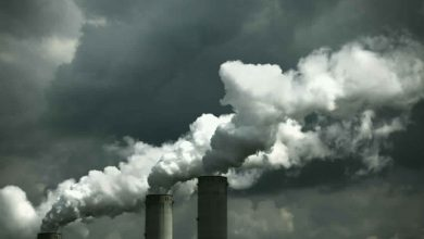 Photo of وزارة البيئة اليابانية تحذّر صناعة الكهرباء..هدف خفض الانبعاث يتأخّر