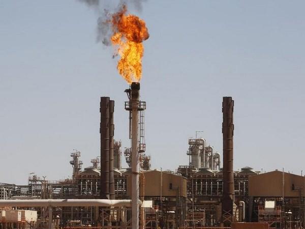 إيرادات الجزائر النفطية في 2020