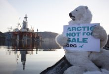 Photo of أوكار الدببة تعوق التنقيب عن النفط في ألاسكا