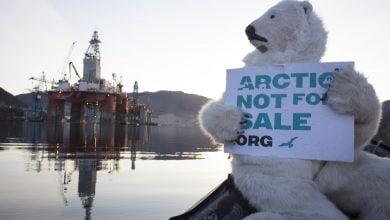 Photo of دعاوى قضائية لمنع عمليات التنقيب عن النفط في ألاسكا