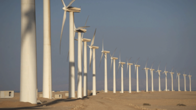 Photo of تفاصيل تمويل أكبر محطّة رياح ينفّذها القطاع الخاصّ المصري