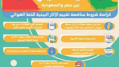 Photo of إنفوغرافيك.. مناقصة محلّية ضمن مشروع الربط الكهربائي المصري السعودي