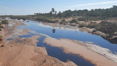 Photo of كارثة بيئيّة تهدد أراضٍ زراعية بعد التسرب النفطي في الجزائر