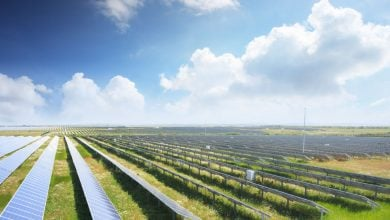 Photo of تويوتا تعتزم تدشين أكبر محطّة طاقة شمسية في فرجينيا