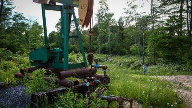 Photo of إدارة ترمب تسهّل التنقيب عن النفط والغاز في الغابات