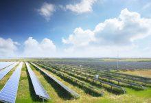 Photo of 14.5 مليار دولار تمويلًا لشركات الطاقة الشمسية في 2020