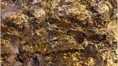Photo of 3 مزايدات عالمية للتنقيب عن الذهب والفوسفات في مصر