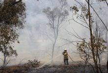 "Photo of ""أزمة مناخ"" بين بريطانيا وأستراليا"