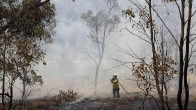 Photo of كاليفورنيا تقطع الكهرباء عن 271 ألف منزل خوفًا من الحرائق