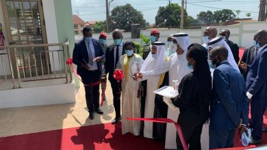 Photo of إنجاز مشروع الكهرباء الوطني في غينيا بدعم إماراتي