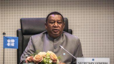 Photo of باركيندو: الاجتماع القادم لمنتجي النفط سيكون الأكثر أهمّية في تاريخ أوبك