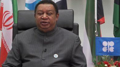 Photo of باركيندو: تحالف أوبك + ملتزم بتحقيق استقرار سوق النفط