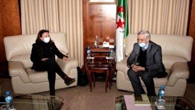 Photo of تعاون مرتقب بين الجزائر والدنمارك للاستفادة من طاقة الرياح