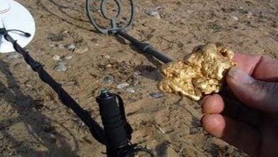 Photo of الجزائر تخصص 45 مليون دولار للتنقيب عن الذهب والمعادن
