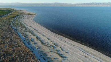Photo of سالتون سي.. أكبر بحيرة في كاليفورنيا تتحول إلى وادي الليثيوم