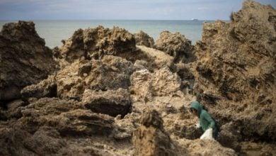 Photo of إسرائيل تفتح تحقيقًا لكشف أسباب تسرّب نفطي في الخط الساحلي