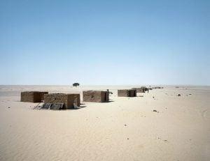 صحراء النيجر