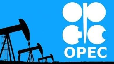 Photo of إنتاج أوبك+ النفطي يصعد 3.316 مليون برميل يوميًا في مارس