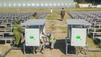 Photo of إضاءة مزارع الزهور في كينيا بالطاقة الشمسية