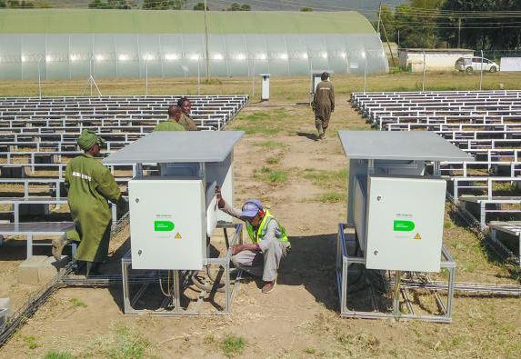 مزارع الزهور - الطاقة الشمسية