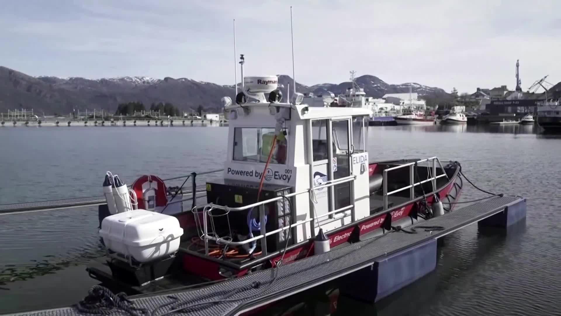 شاحن قوارب