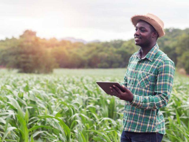 كهربة قطاع الريف في إثيوبيا