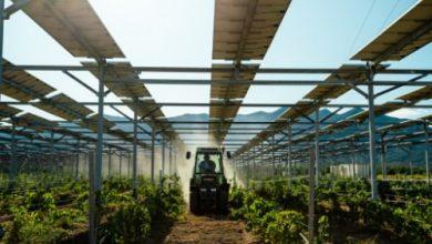 Photo of خطة أميركية لزيادة الاستثمارات الخضراء في المناطق الريفية