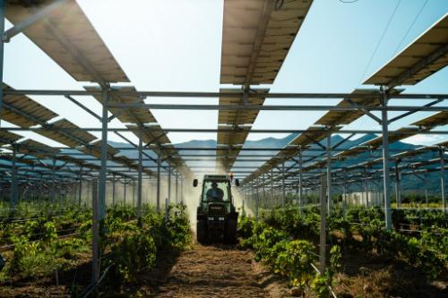 الاستثمارات الخضراء في المناطق الريفية