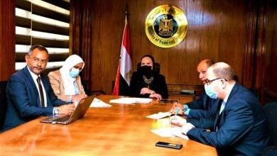 Photo of شركة نيسان تتوسع في مصر لتصنيع وتصدير السيارات العالمية