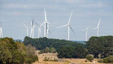 Photo of فيكتوريا الأسترالية تتعهد بخفض الانبعاثات.. ودعم مغرٍ للسيارات الكهربائية