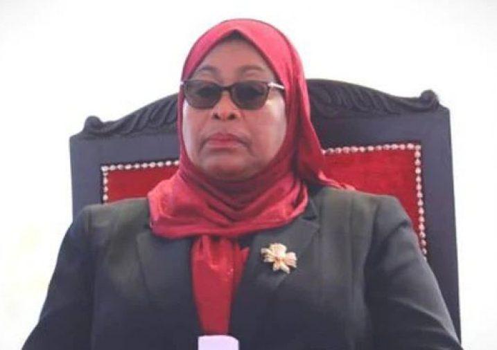 رئيسة تنزانيا سامية حسن - أرشيفية