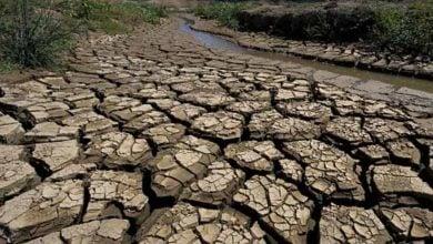 Photo of لمواجهة أزمة المياه.. 4 دروس مستفادة من تغير المناخ (تقرير)
