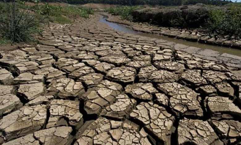 الجفاف في البرازيل