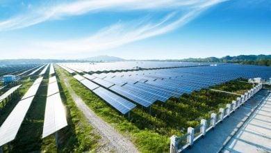 Photo of الدنمارك تطرح مناقصة محايدة كربونيًا لنشر محطات الطاقة المتجددة
