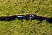Photo of يوم البيئة العالمي.. دعوات أممية لإصلاح مساحة أكبر من أميركا للعيش الآمن