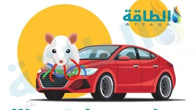 Photo of تيسلا تتبرأ من التهمة.. القوارض تلتهم الأسلاك الداخلية للسيارات الكهربائية