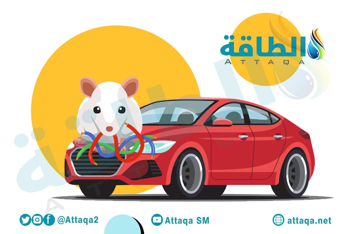 تيسلا - السيارات الكهربائية والفئران