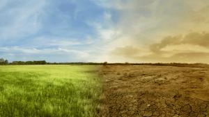 مجموعة الـ20 - تغير المناخ - التغير المناخي
