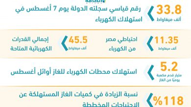 Photo of أرقام غير مسبوقة بشأن استهلاك الكهرباء في مصر (إنفوغرافيك)