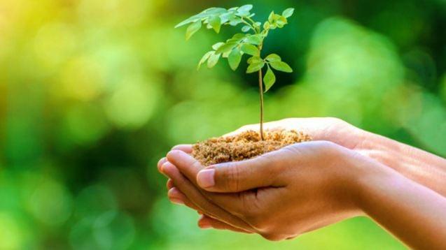 سعي دؤوب لتحقيق أهداف التنمية المستدامة