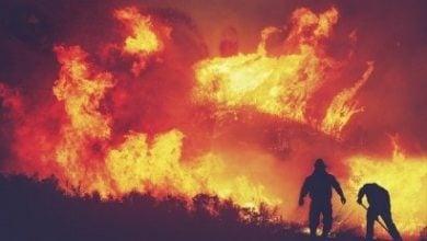 Photo of دخان حرائق الغابات يهدد إنتاج الطاقة الشمسية في كاليفورنيا