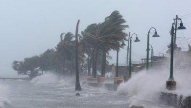 Photo of إعصار نيكولاس يعطل خطوط إنتاج فريبورت للغاز المسال في تكساس