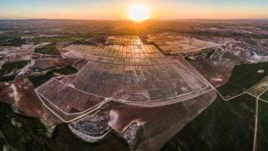 Photo of لايت سورس بي بي تستهدف 25 غيغاواط من الطاقة الشمسية