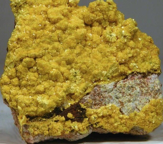 اليورانيوم في موريتانيا